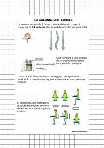 la-colonna-vertebrale