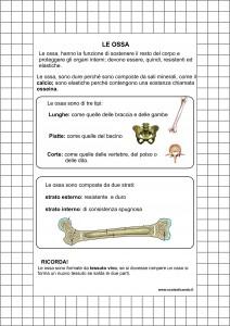 le-ossa