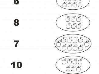 Associa numeri a quantità fino al 10